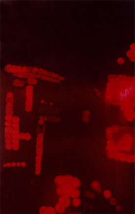 The Other World, 60 x 100 cm, acrylic on canvas, 1998