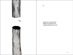 Diana`s Tree Alejandra Pizarnik, layout & illustrations, 2020