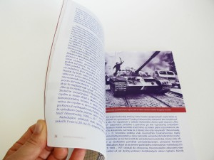 Cultural Parallels, publication, 2011