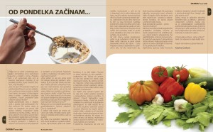 Derma magazine, 2010-2011