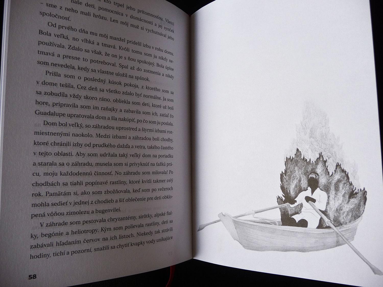 Amparo Dávila illustrations