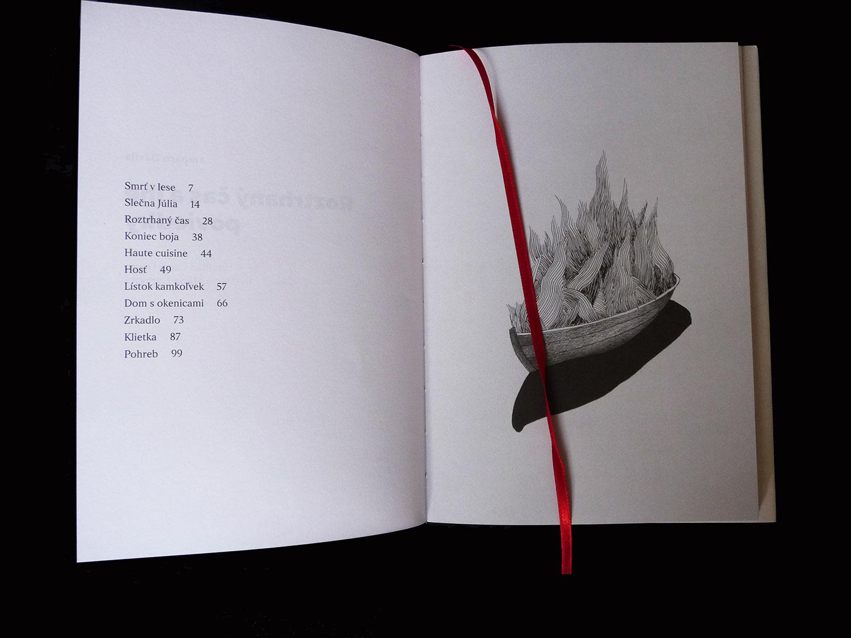 Amparo Dávila layout & illustrations