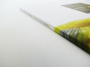 Bienial_of_Fine_Arts_Catalogue1