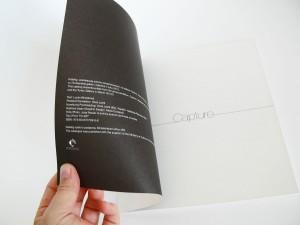 Capture_catalogue3