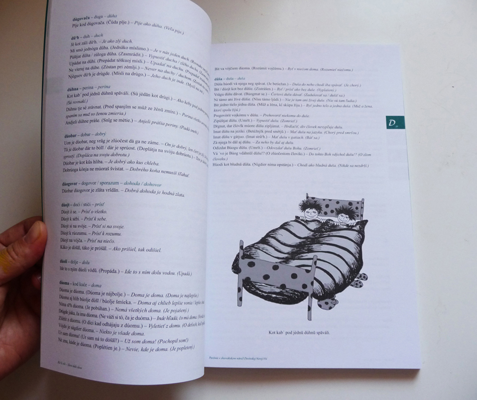 Rič k riči, publication layout & illustrations